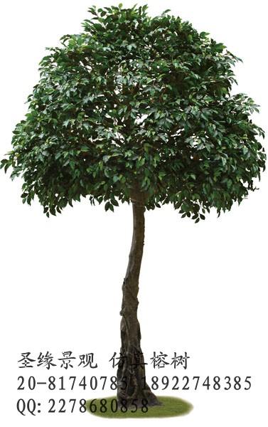 查看假榕树 古榕树 仿真榕树 专业生产仿真树厂家原图